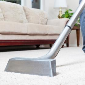 Harbour Carpet Cleaning